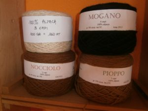 www.alpacone.it